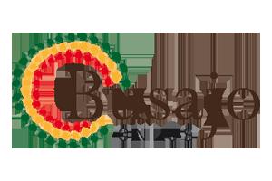 logo-busajo-small