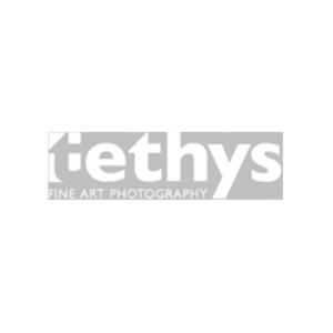 logo-tethys-busajo1