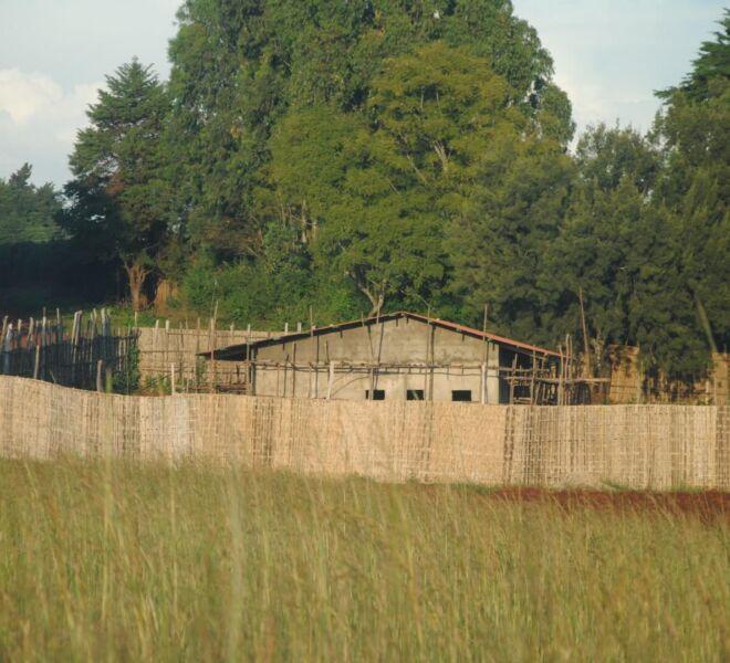 Foto 4 - DSC_4111 recinzione terreno