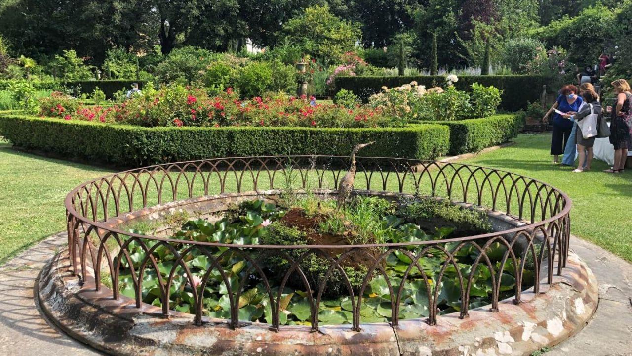 4 - Vasca giardino2